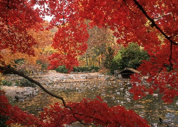 Fall in Love with Ashland