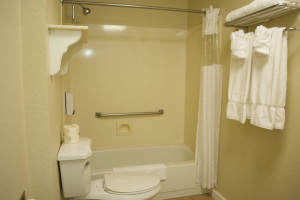 half shower half bath Stratford king room