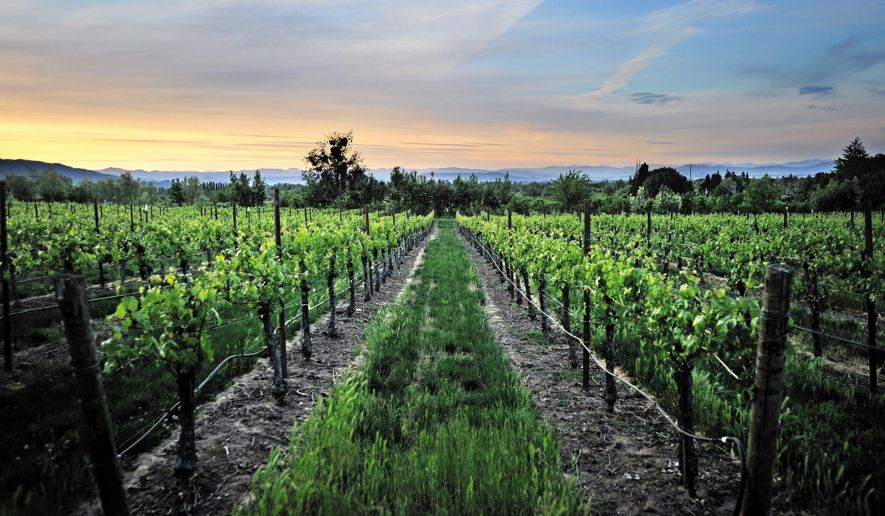 Southern Oregon Wineries